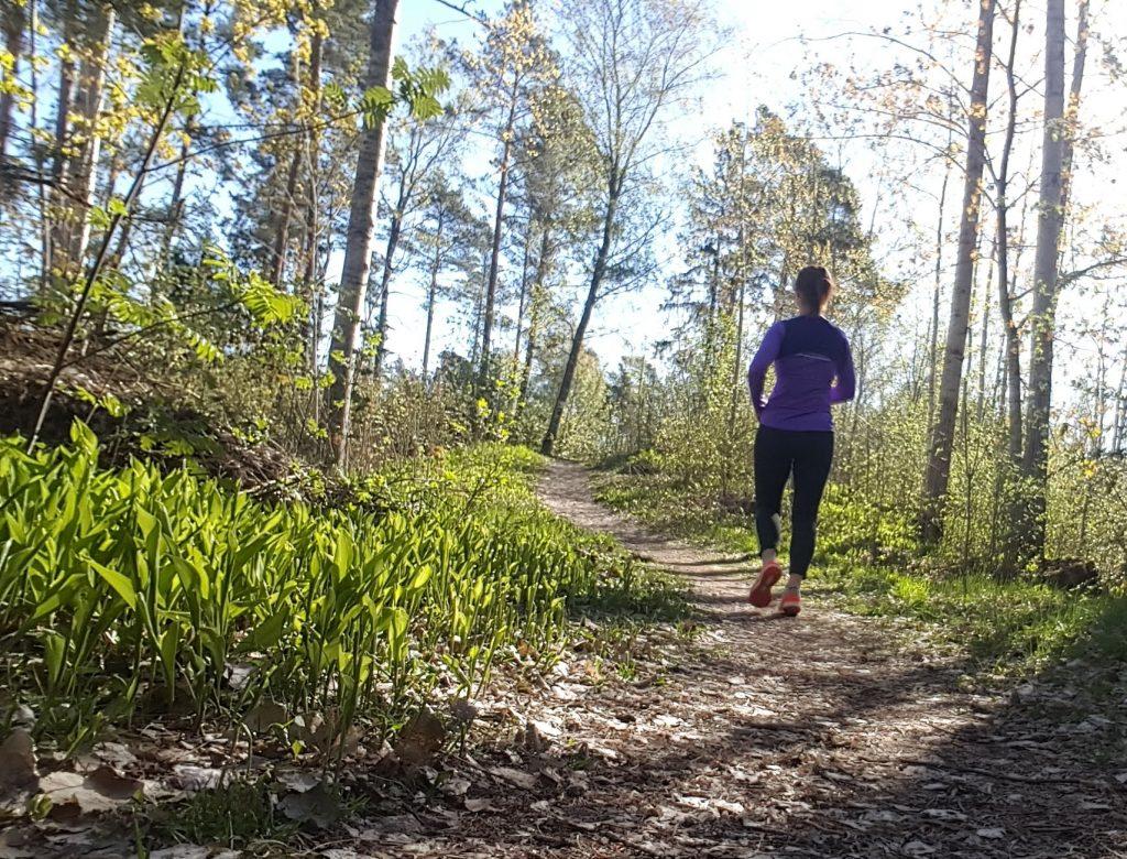 träningsprogram halvmaraton