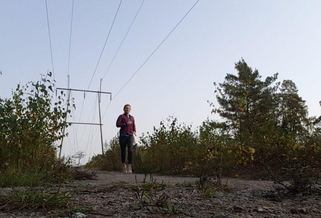 springa på hösten